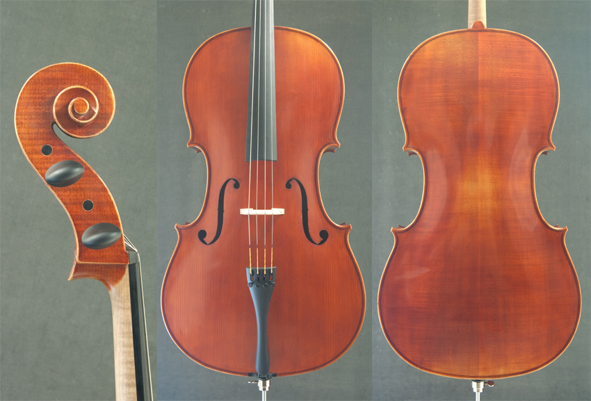 Cello Alois Sandner 302805